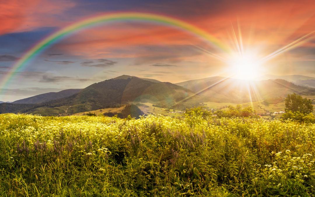 Spirituality's Role