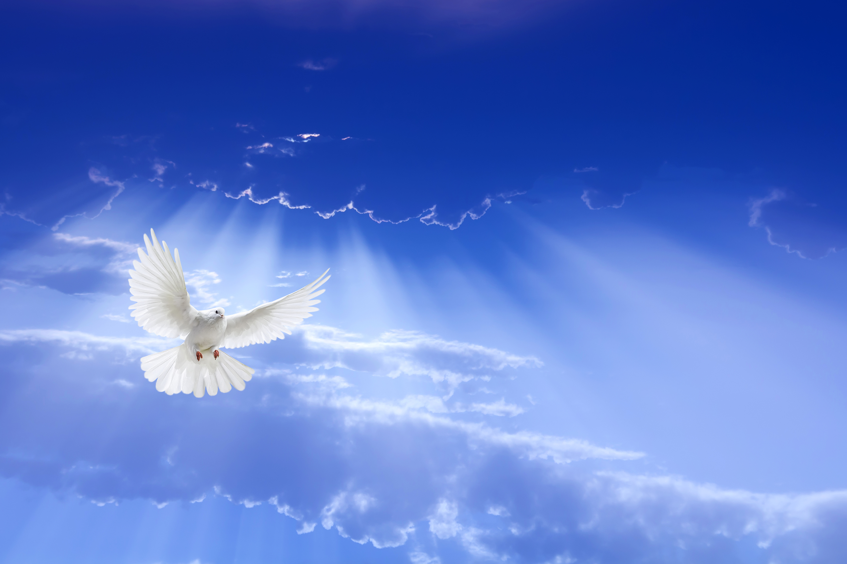 Holistic Spiritual Healing Healing Spiritualist